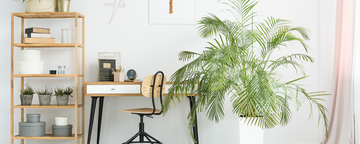 3 Questions to Ask About Your WFH Workspace